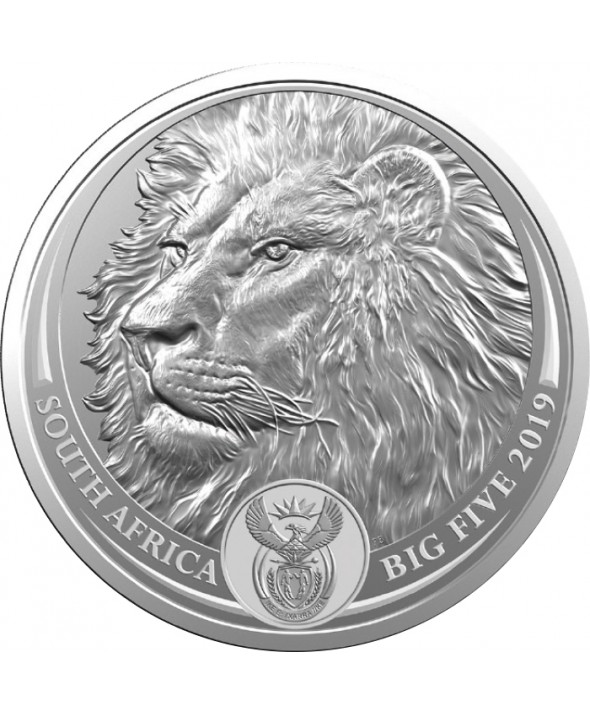 1 Once Argent AFRIQUE DU SUD 2019 - LION - The Big Five