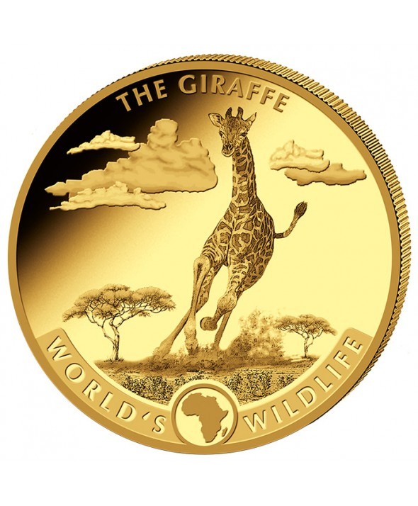 Girafe - 5 onces Or (155,5 g.) Congo 2019 - 500 francs